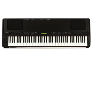 CP300 88 Key Electric Piano