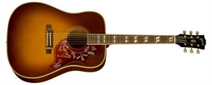Hummingbird Acoustic/Electric