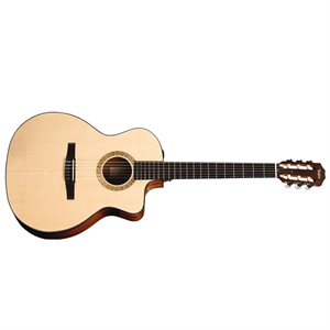 NS24ce nylon string Acoustic/Electric