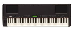 P200 88 Key Electric Piano