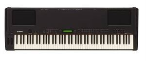 P250 88 Key Electric Piano